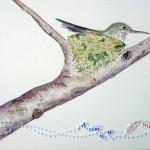 Humingbird, 2010