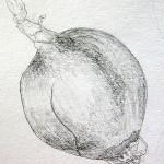 Onion, 2010